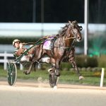 Wonder Mile for Wonder from Down Under:  Lazarus N prevails in Dan Patch