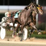 Trotting Queen Hannelore Hanover returns to Indiana