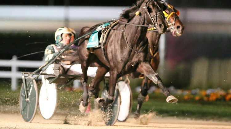 Indiana well-represented in Breeders Crown