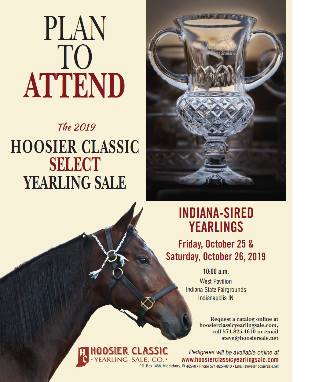 Hoosier_Classic_Yearling_Sale_091019