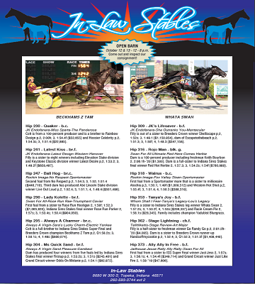 In-Law_Stables_Page_2_2020