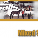Pair of Indiana trotters sell at Tattersalls