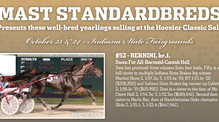 Mast Standardbreds has small but mighty consignment
