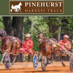 Pinehurst Harness Track accepting winter applications