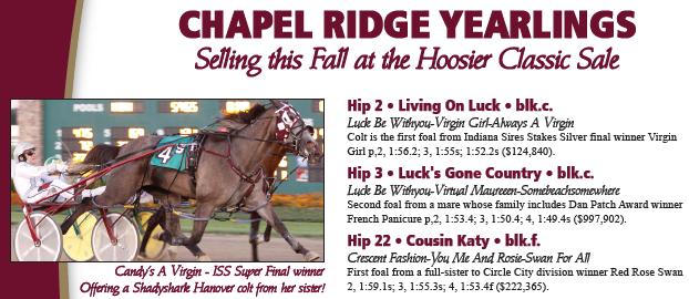 Chapel Ridge offering 25 yearlings at Hoosier Classic Yearling Sale