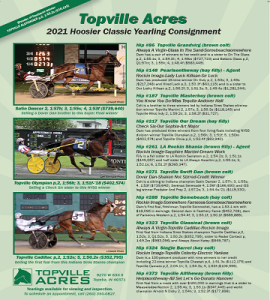 Topville_2021