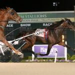 Mallard Hanover stays undefeated in Expresson Final