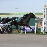 From old to young, fast times recorded at Hoosier Park